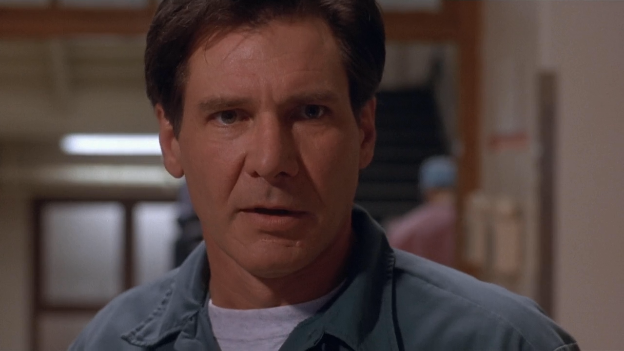 The Fugitive (1993) |  2014: A Film Odyssey